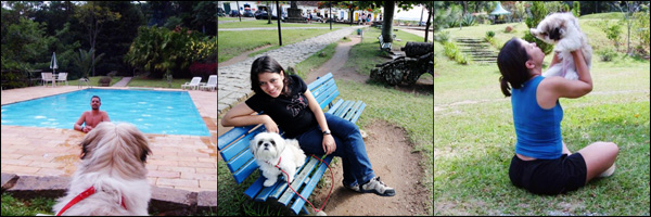 Meu AmiCÃO - Winie