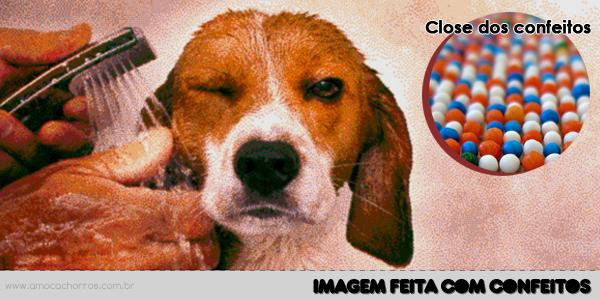 Imagem com confeitos