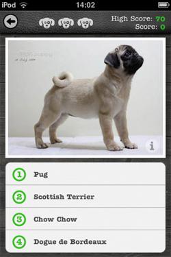 iKnow Dogs - Quiz