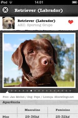 iKnow Dogs - Tela sobre a raça, no caso, Labrador