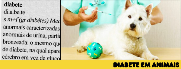 Diabete em animais