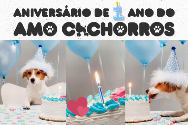Amo Cachorros - 1 ano