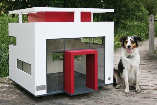 Casinhas para cachorros