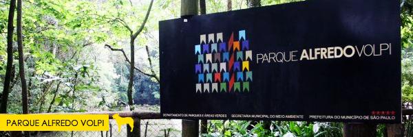 Parque Alfredo Volpi  - Parques e praças em São Paulo que aceitam cachorros! Saiba mais no post.