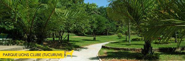 Parque Parque Lions Clube (Tucuruvi)  - Esse parque aceita cachorros! Saiba mais no post.