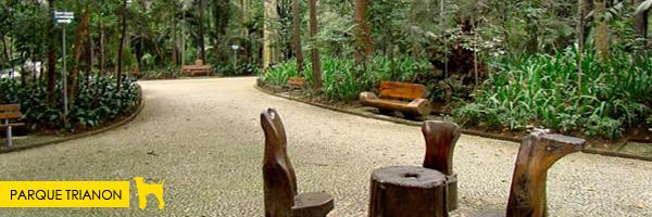 Parque Trianon/Av. Paulista  - Parques e praças em São Paulo que aceitam cachorros! Saiba mais no post.