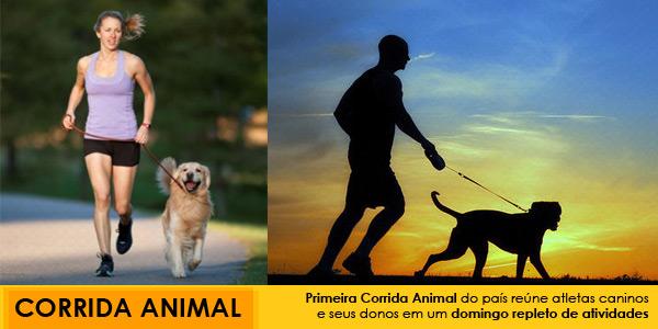 Corrida Animal